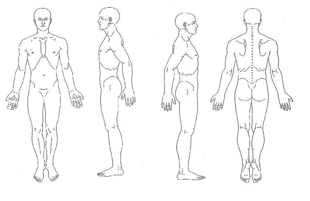 Картинка человека в полный рост части тела